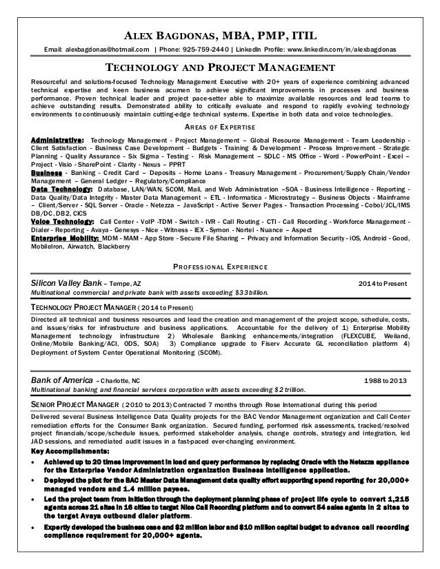 resume technical leader