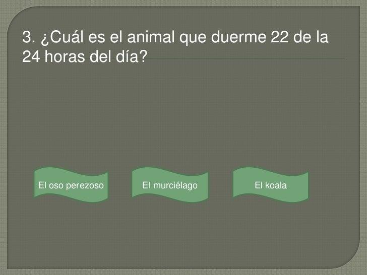 3. ¿Cuál es el animal que duerme 22 de la24 horas del día?  El oso perezoso   El murciélago   El koala