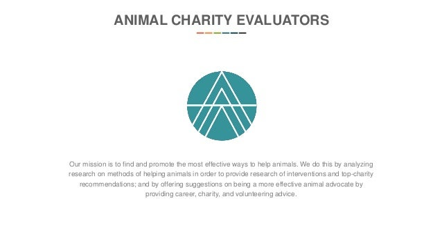 25+ Best Ideas About Charity Evaluation On Pinterest