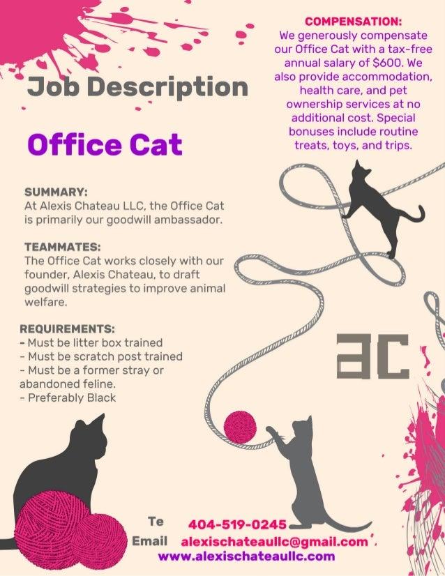 Alexis Chateau LLC Office Cat Job