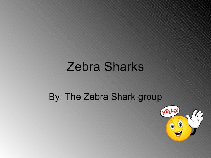 Zebra Sharks By: The Zebra Shark group