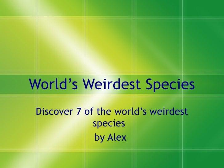 World's Weirdest Species Discover 7 of the world's weirdest species  by Alex