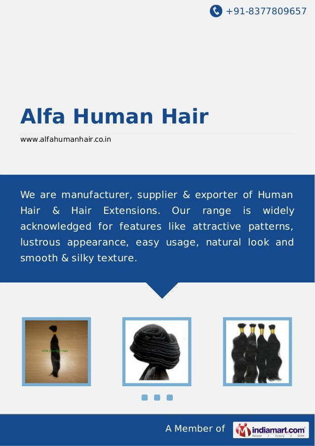 +91-8377809657 A Member of Alfa Human Hair www.alfahumanhair.co.in We are manufacturer, supplier & exporter of Human Hair ...