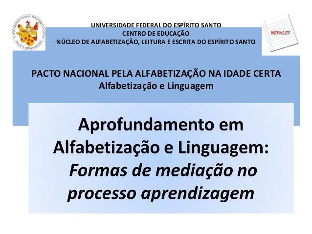 PACTO NACIONAL PELA ALFABETIZAÇÃO NA IDADE CERTA Alfabetização e Linguagem UNIVERSIDADE FEDERAL DO ESPÍRITO SANTO CENTRO D...