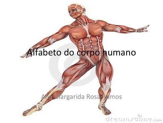 Alfabeto do corpo humano   Ana Margarida Rosa Ramos