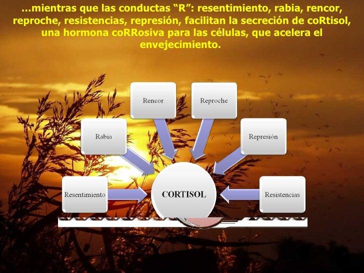 """… mientras que las conductas """"R"""": resentimiento, rabia, rencor, reproche, resistencias, represión, facilitan la secreción ..."""