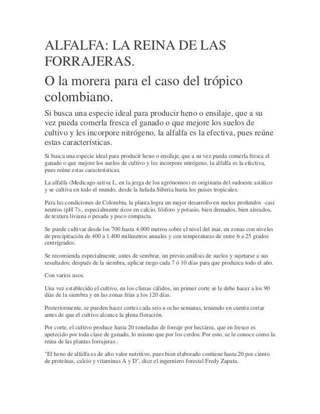 ALFALFA: LA REINA DE LAS FORRAJERAS. O la morera para el caso del trópico colombiano.  Si busca una especie ideal para pro...