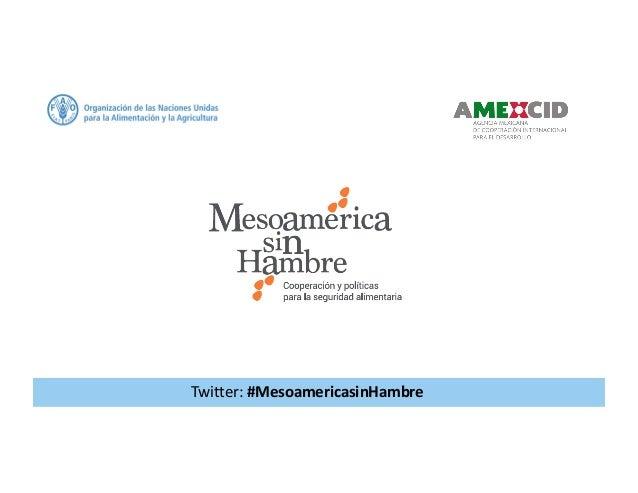 Twitter:#MesoamericasinHambre