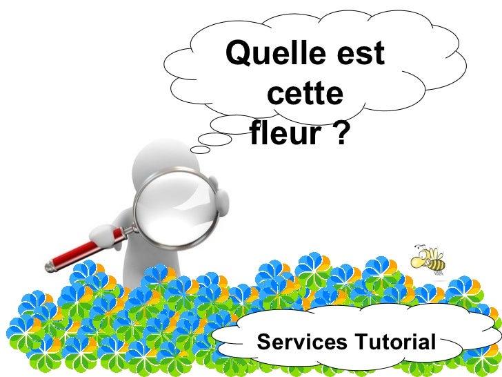 Quelle est    cette  fleur ?      Services Tutorial