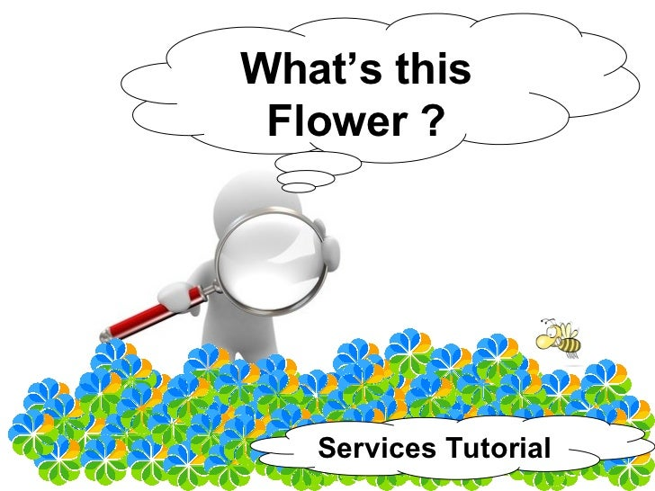 What's this  Flower ?        Services Tutorial