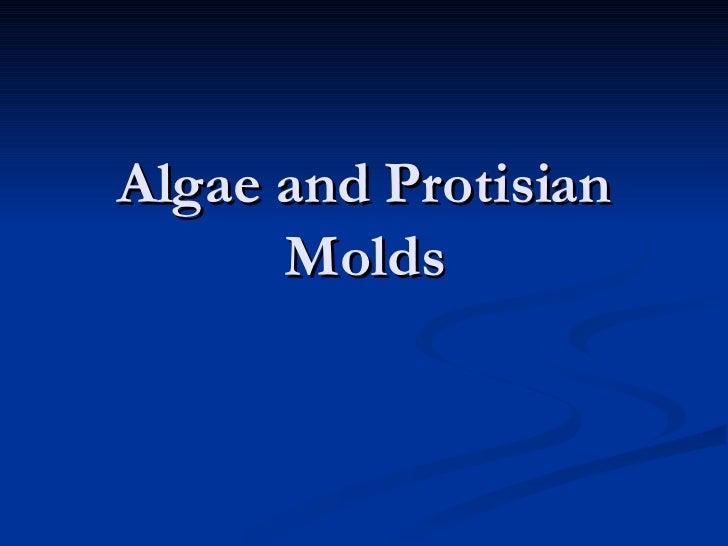Algae and Protisian Molds