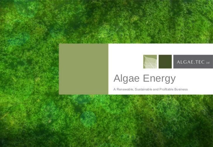 Algae Energy A Renewable, Sustainable and Profitable Business