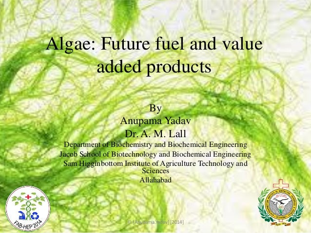 Algae: Future fuel and value added products By Anupama Yadav Dr. A. M. Lall Department of Biochemistry and Biochemical Eng...
