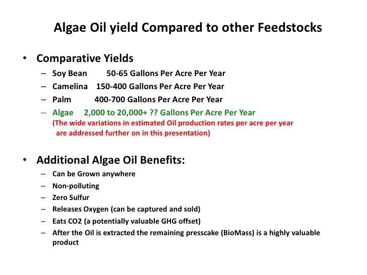 algae based biofuels 15