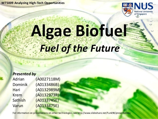 Mobil 1 Oil Change >> Algae Biofuels