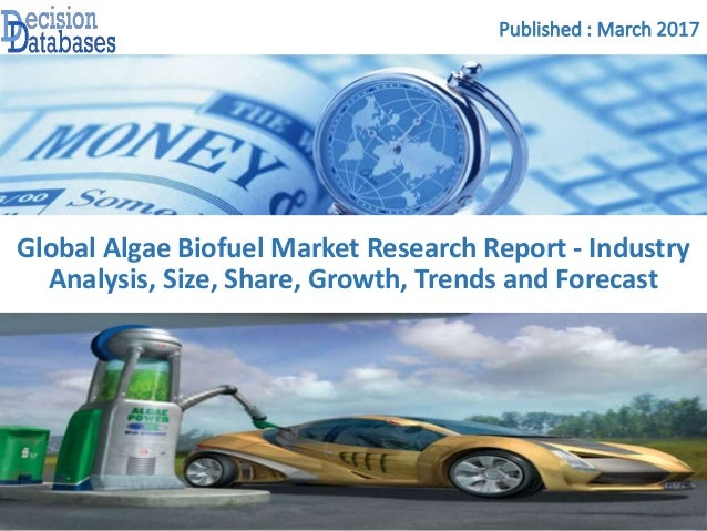 biodiesel technology and business opportunities For biofuels over the next decade or more will provide opportunities for  the  domestic market for biofuels is also expected to be attractive in.