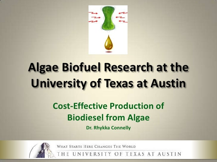 Algae Biofuel Research at the University of Texas - Rhykka Connelly - April 2010