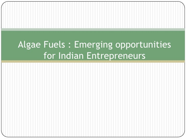 Algae Fuels : Emerging opportunities for Indian Entrepreneurs<br />