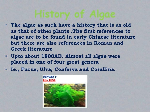 History of Algae • The algae as such have a history that is as old as that of other plants .The first references to algae ...