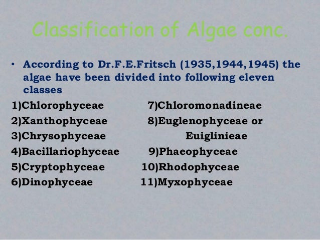 Classification of Algae conc. • According to Dr.F.E.Fritsch (1935,1944,1945) the algae have been divided into following el...