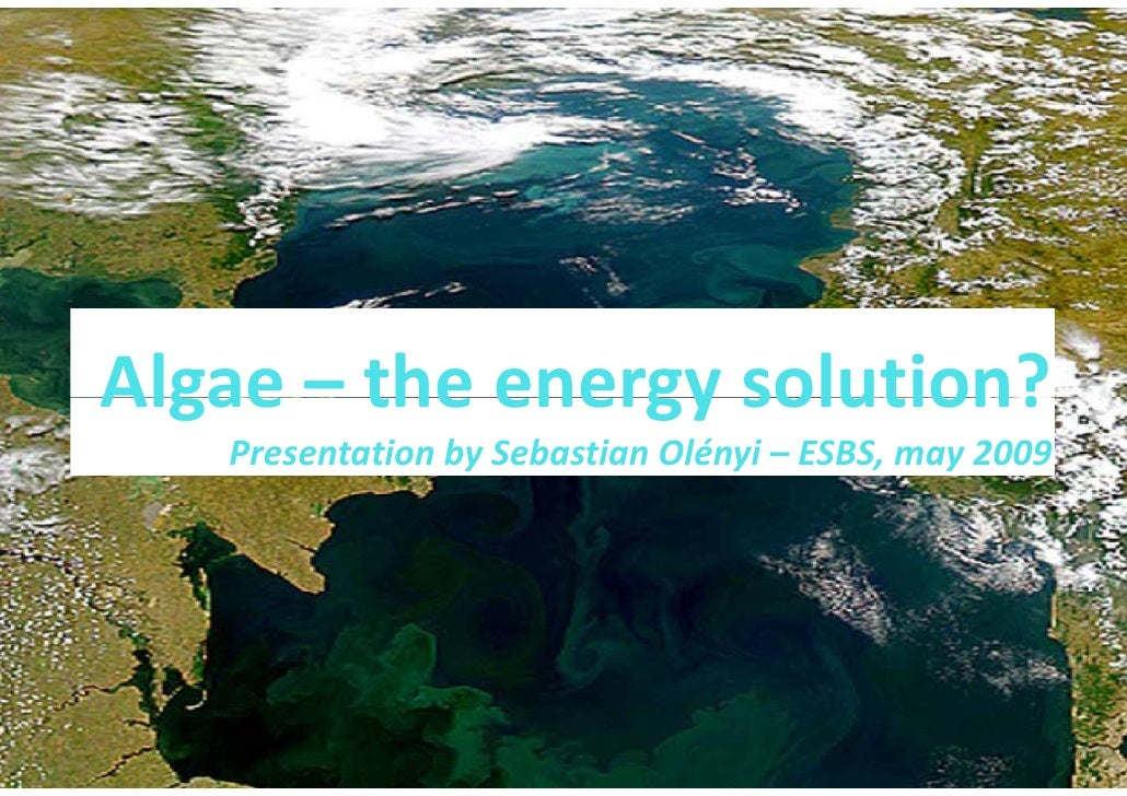 Algae theenergysolution? Algae – the energy solution?    PresentationbySebastianOlényi – ESBS,may2009