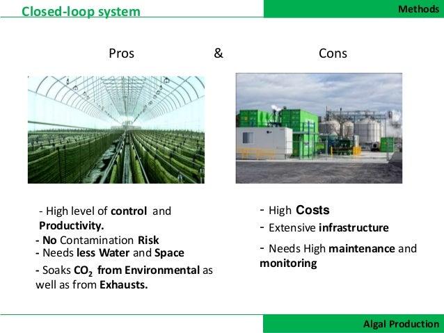 Biofuels Pros And Cons >> Biofuels Pros And Cons Homework Sample