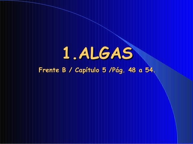 1.ALGAS1.ALGAS Frente B / Capítulo 5 /Pág. 48 a 54.Frente B / Capítulo 5 /Pág. 48 a 54.