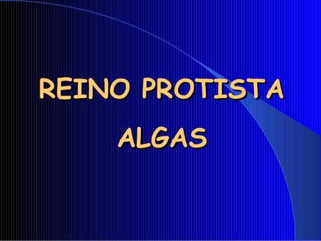 REINO PROTISTAREINO PROTISTA ALGASALGAS