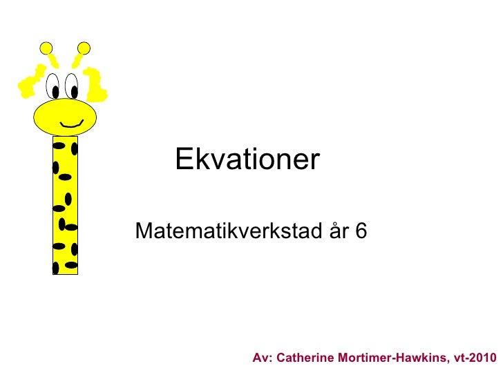 ekvationer