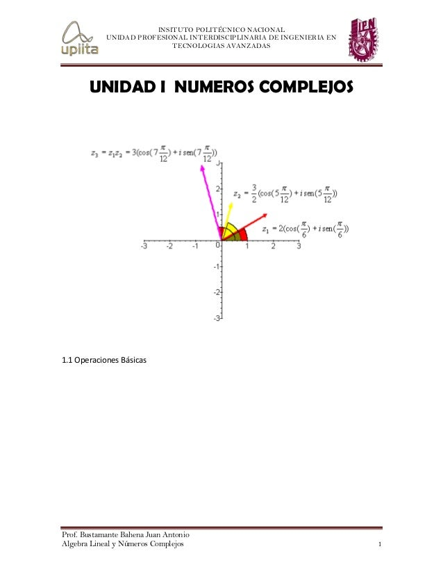 INSITUTO POLITÉCNICO NACIONAL UNIDAD PROFESIONAL INTERDISCIPLINARIA DE INGENIERIA EN TECNOLOGIAS AVANZADAS  UNIDAD I NUMER...