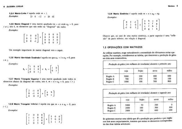Boldrini algebra linear