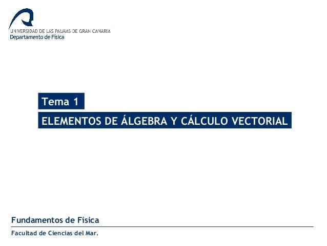Tema 1 ELEMENTOS DE ÁLGEBRA Y CÁLCULO VECTORIAL Fundamentos de Física Facultad de Ciencias del Mar.
