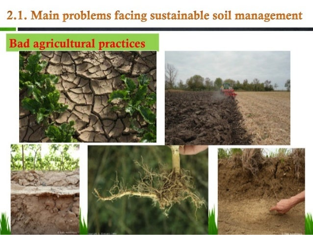 problems affecting agriculture Farmed areas – both on land and in the water – provide important habitats for  many wild plants and animals when farming operations are sustainably  managed.