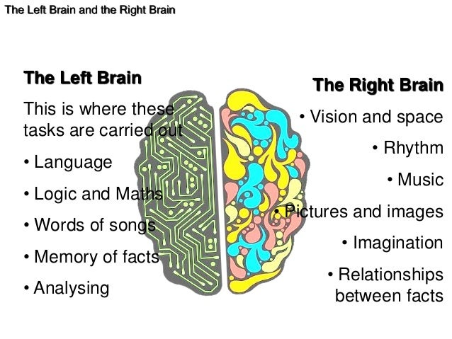 dominant hemisphere of the brain for languages Each hemisphere provides a different set of functions brain hemispheres left brain versus right brain this tends to favor left brain dominant students.