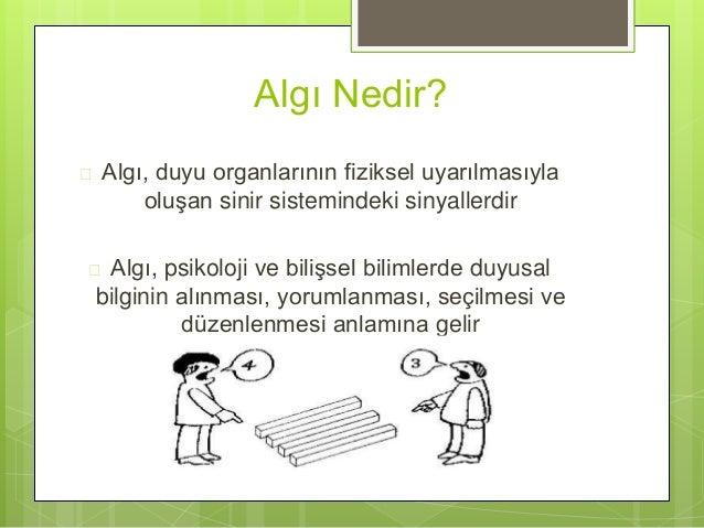 Algi yöneti̇mi̇ Slide 2
