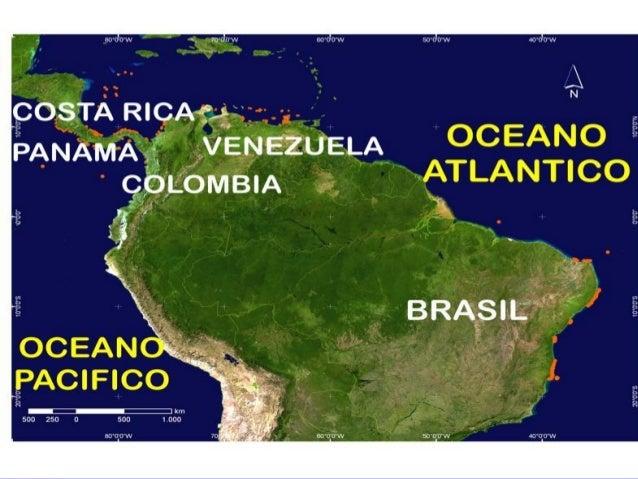 En la Argentina lo podemos encontraren la región Chaqueña