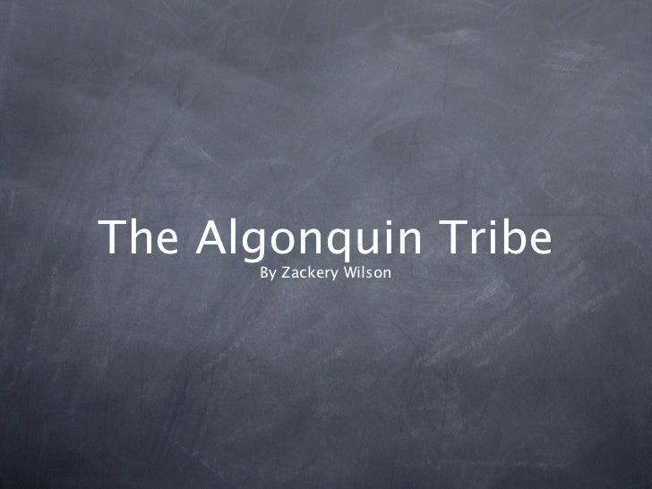 The Algonquin Tribe      By Zackery Wilson
