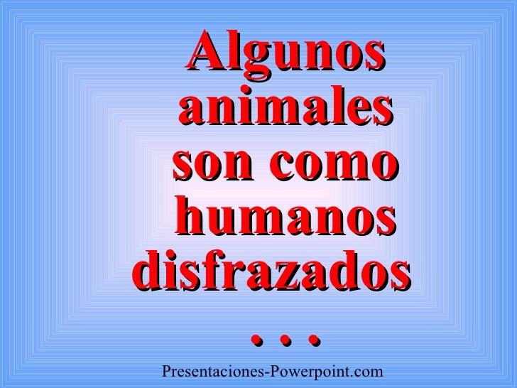 Algunos animales son como humanos disfrazados  . . . Presentaciones -Powerpoint.com