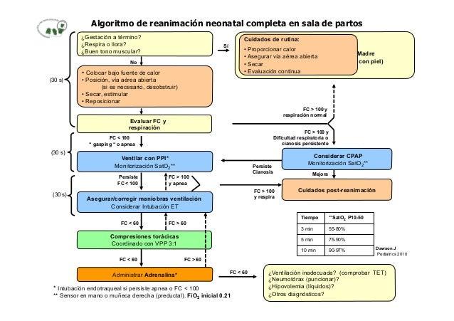 Algoritmo de reanimación neonatal completa en sala de partos ¿Gestación a término? ¿Respira o llora? ¿Buen tono muscular? ...