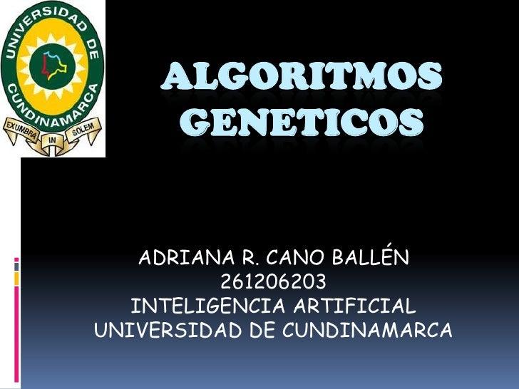 ALGORITMOS GENETICOS<br />ADRIANA R. CANO BALLÉN<br />261206203<br />INTELIGENCIA ARTIFICIAL<br />UNIVERSIDAD DE CUNDINAMA...