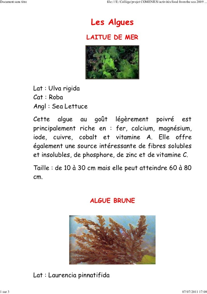 Document sans titre                             file:///E:/Collège/projet COMENIUS/activités/food from the sea 2009 ...   ...