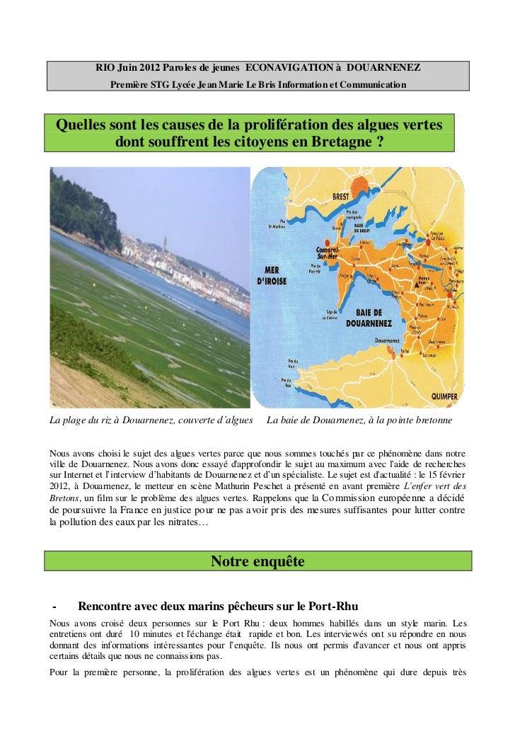 RIO Juin 2012 Paroles de jeunes ECONAVIGATION à DOUARNENEZ                Première STG Lycée Jean Marie Le Bris Informatio...