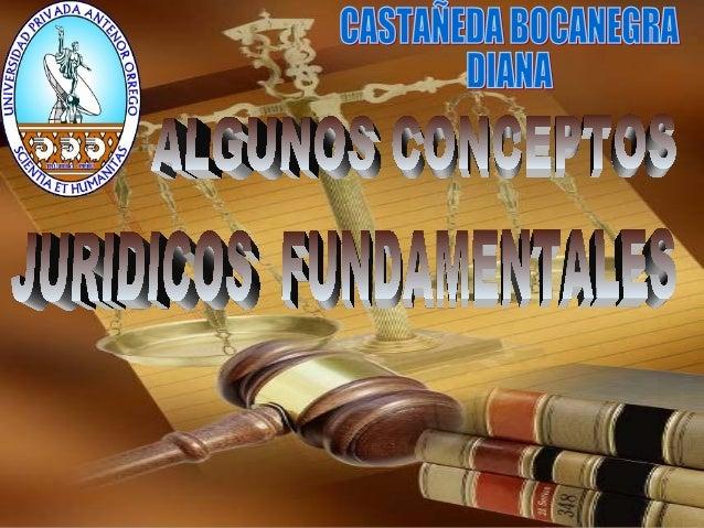 ALGUNOS CONCEPTOS JURIDICOS FUNDAMENTALES sección I - EL SUJETO DE DERECHO