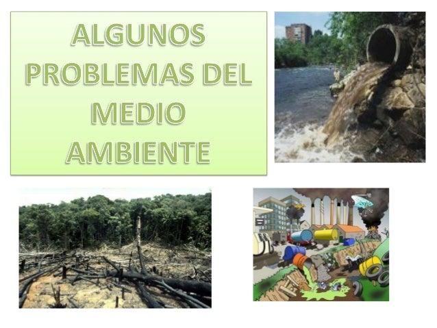 Si arrojamos a los ríos o mares residuos orgánicos, plásticos, vidrio, productos químicos etc. contaminamos el agua. Tanto...