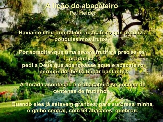 A lição do abacateiroA lição do abacateiro Pe. HelderPe. Helder Havia no meu quintal um abacateiro que produziaHavia no me...