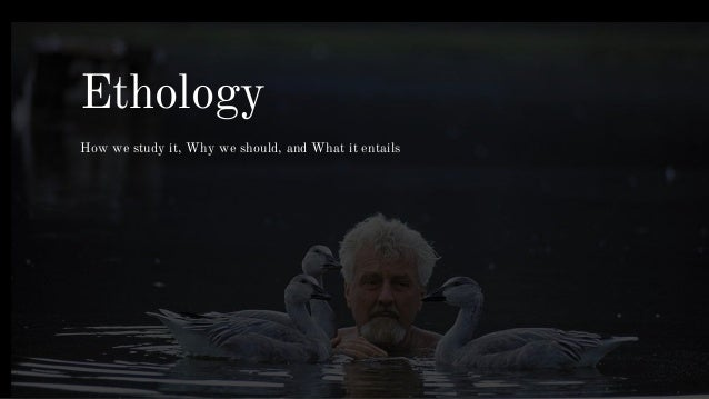 Ethology - The Study of Animal Behavior - YouTube