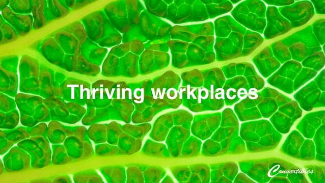 Thriving workplaces!
