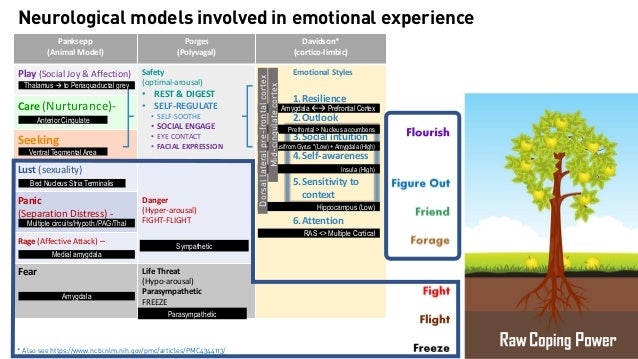Team Resilience (OWLS) ◦ Bennett, J. B., Neeper, M., Linde, B. D., Lucas, G. M., & Simone, L. (2018).Team resilience train...