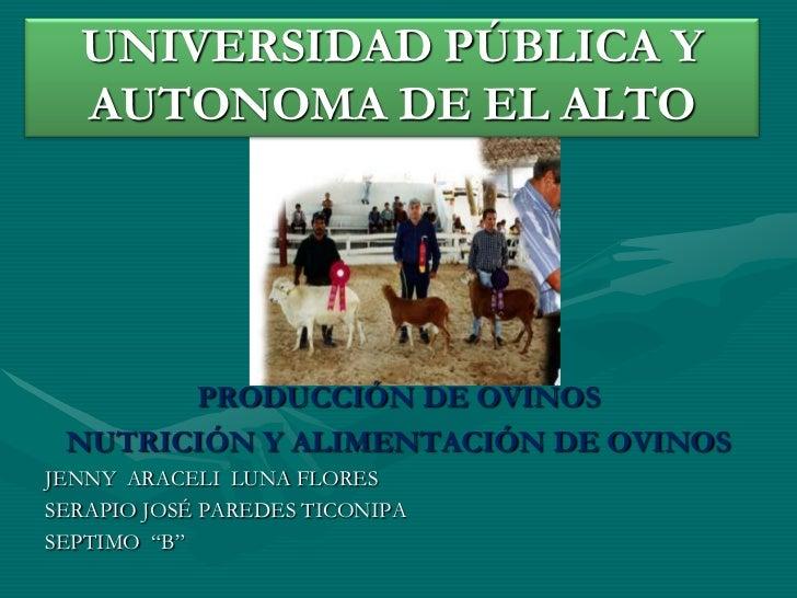 UNIVERSIDAD PÚBLICA Y AUTONOMA DE EL ALTO<br />PRODUCCIÓN DE OVINOS<br />NUTRICIÓN Y ALIMENTACIÓN DE OVINOS<br />JENNY  AR...