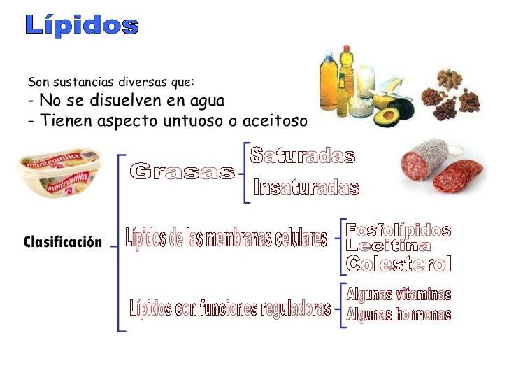 esteroides naturales que son